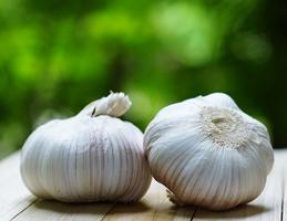 Sadbový česnek - Obrázek